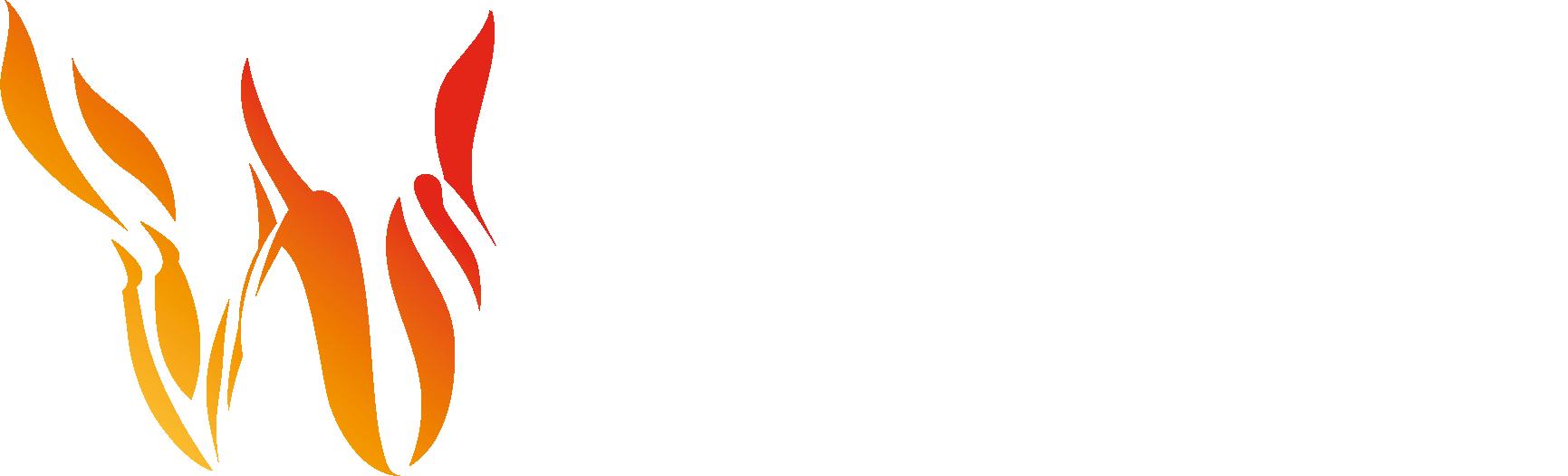 Wildfire Analyst™